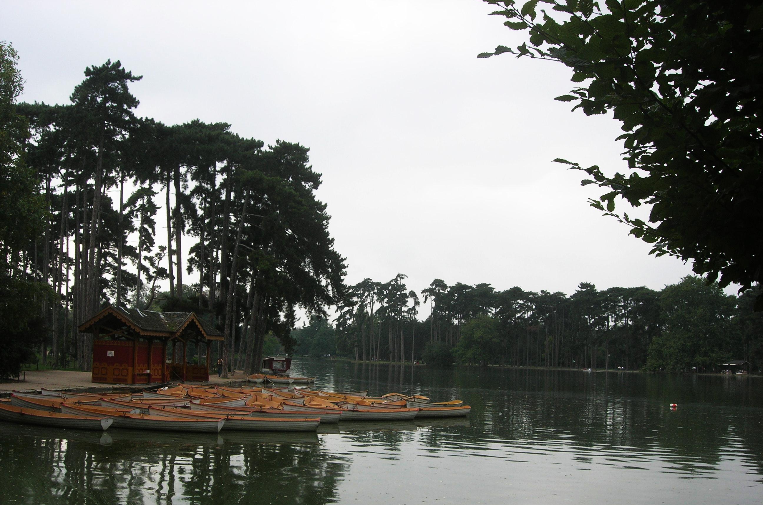 غابة بولونيا