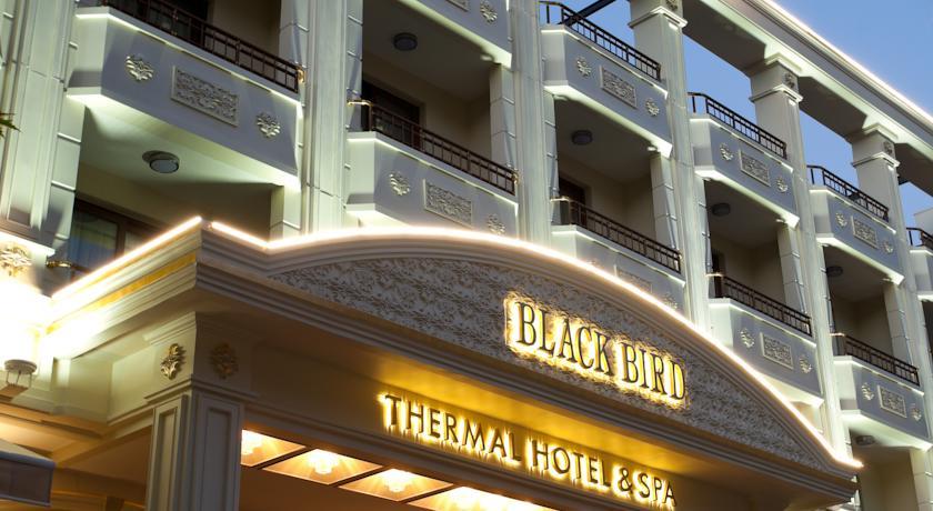فندق بلاك بيرد من فنادق ترمال