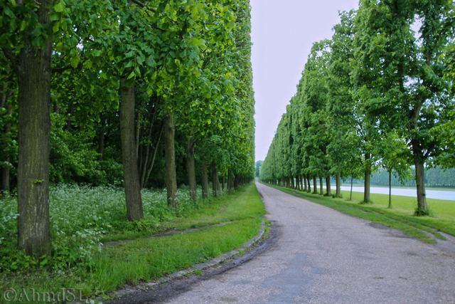 غابة بولونيا في باريس من اجمل حدائق باريس