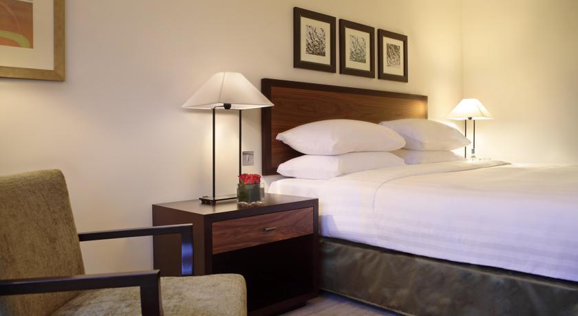 الفنادق في لندن - فندق حياة ريجنسي لندن