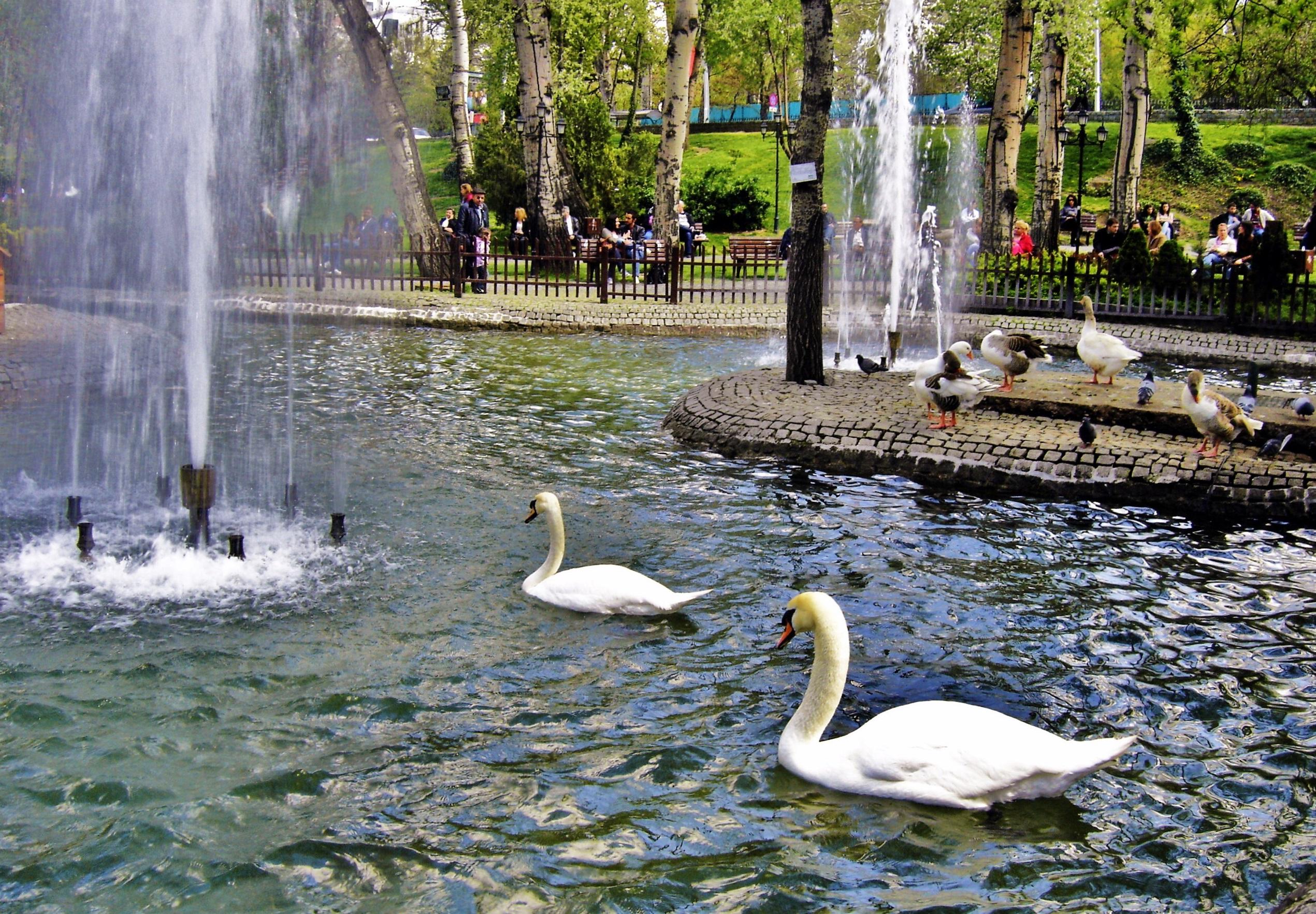 Kuğulu حديقة كوغولو انقرة