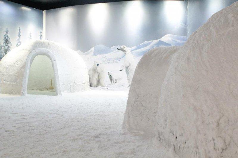 عالم الثلج في اكواريوم انطاليا ، احدى اهم اماكن السياحة في انطاليا تركيا