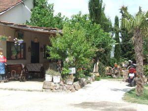 مطعم غولوفا ات مانغال في يلوا تركيا