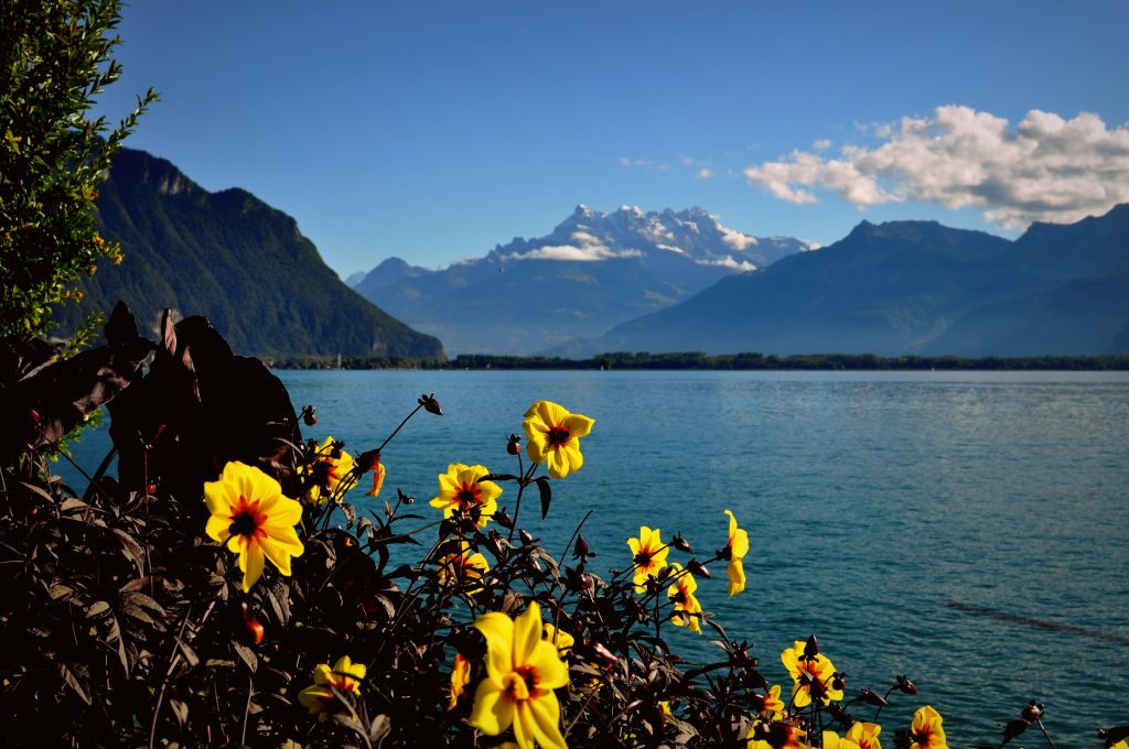 بحيرة جنيف سويسرا