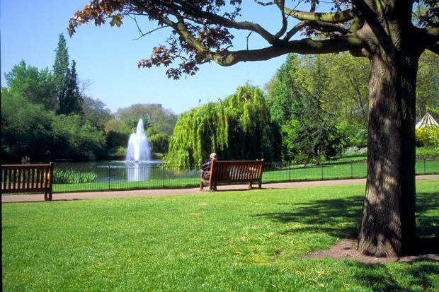 حديقة هايد بارك القريبة من قصر باكنجهام في لندن انجلترا - باكنجهام بالاس