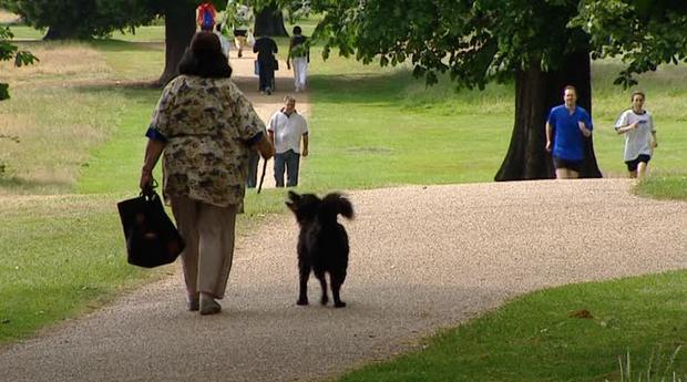 هايد بارك لندن من افضل حدائق لندن انجلترا