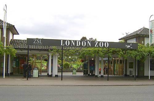حديقة حيوانات لندن