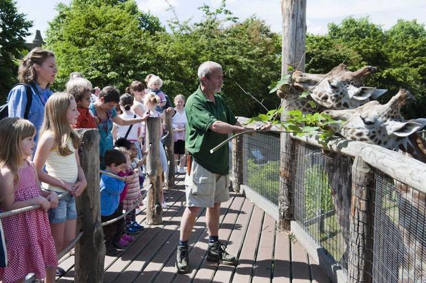 حديقة الحيوانات في لندن