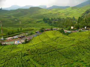 تعرف في المقال على افضل فنادق بونشاك اندونيسيا القريبة ايضاً من افضل معالم السياحة في بونشاك