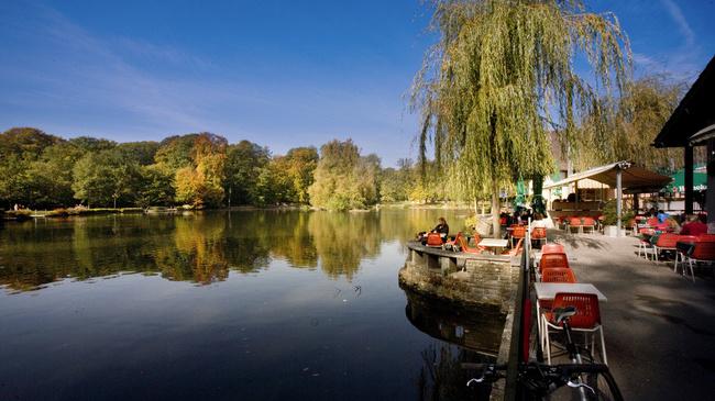 بحيرة سوفابيلين لوزان