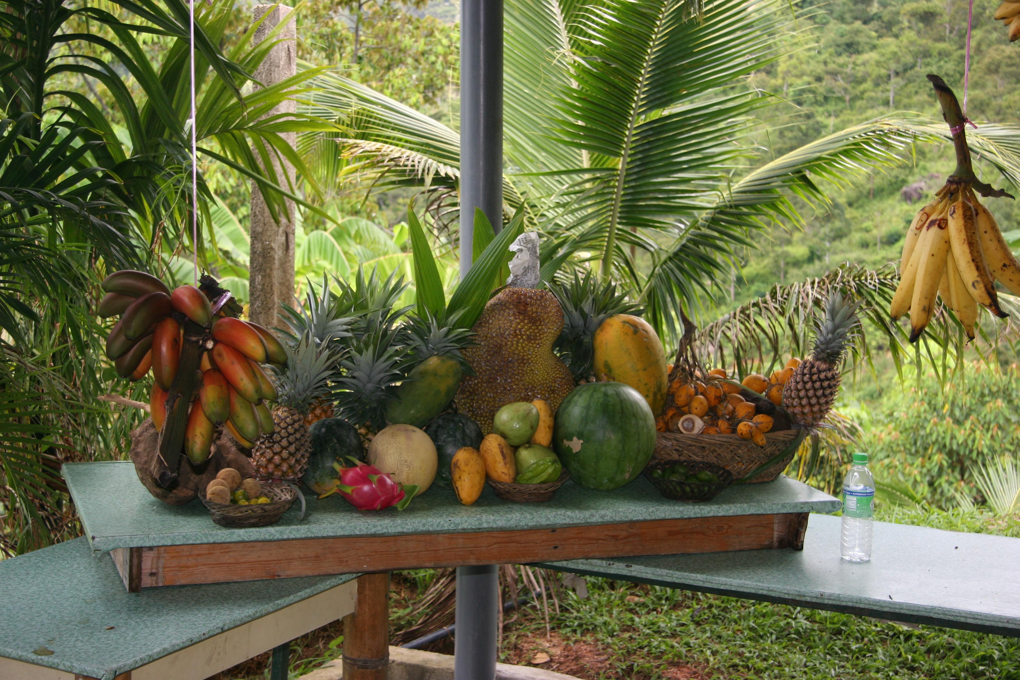 حديقة الفواكه في ماليزيا بينانج