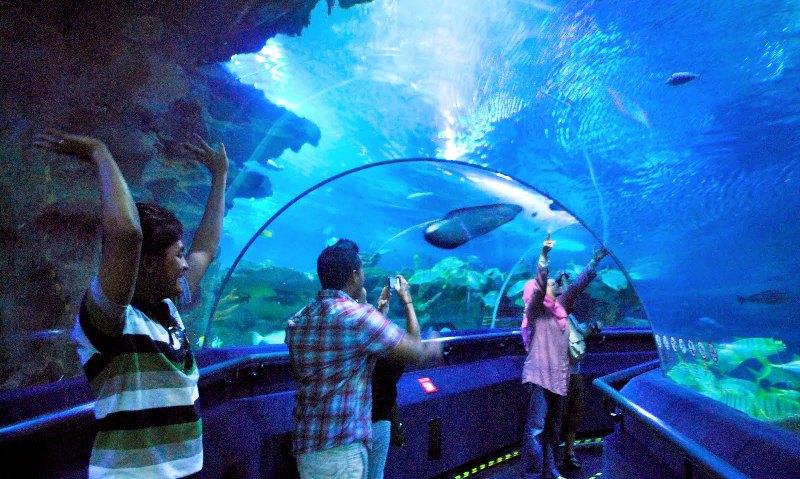 عالم تحت الماء في لنكاوي