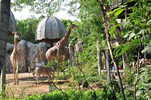 مناطق سياحية في بانكوك