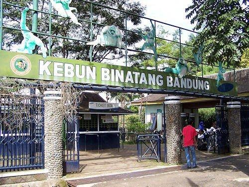 حديقة الحيوانات في باندونق من اهم اماكن السياحة في باندونغ