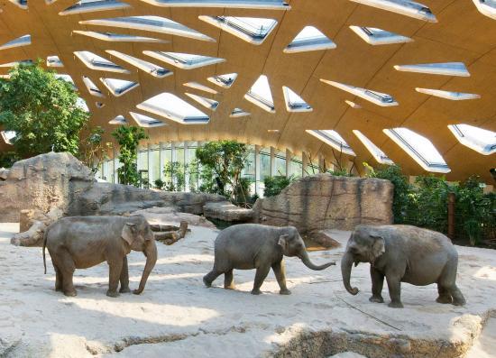 حديقة حيوانات زيورخ من اهم الاماكن السياحية في زيورخ و احدى معالم السياحة في زيورخ سويسرا الهامة في مدينة زيورخ