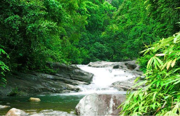 الانهار والقنوات المائية في كيرلا