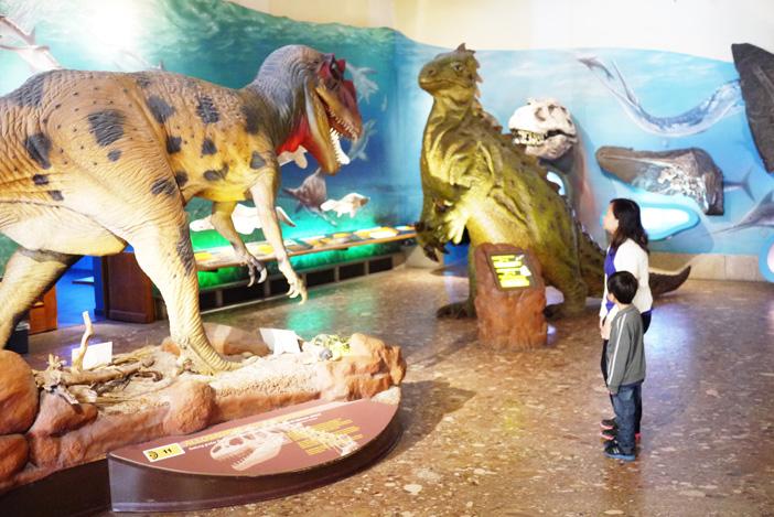 متحف التاريخ الطبيعي والتكنولوجيا سالزبورغ