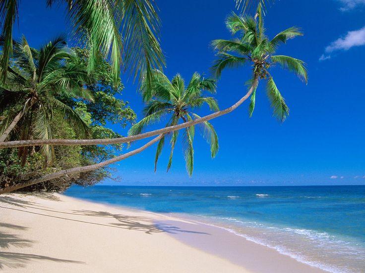 السياحة في غوا الهند