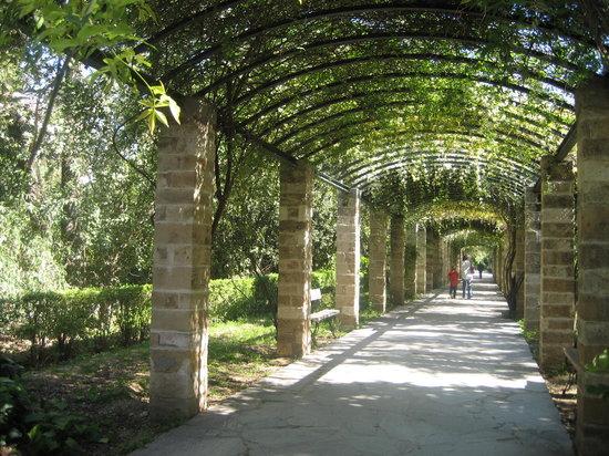 الحدائق الوطنية في اثينا