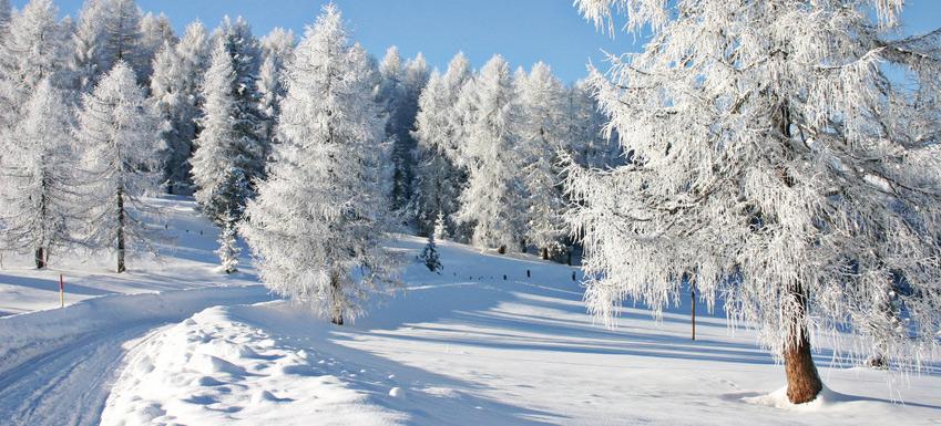 افضل 4 وجهات للسياحة الشتوية في المانيا