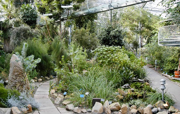 حديقة هورتوس بوتانيكس