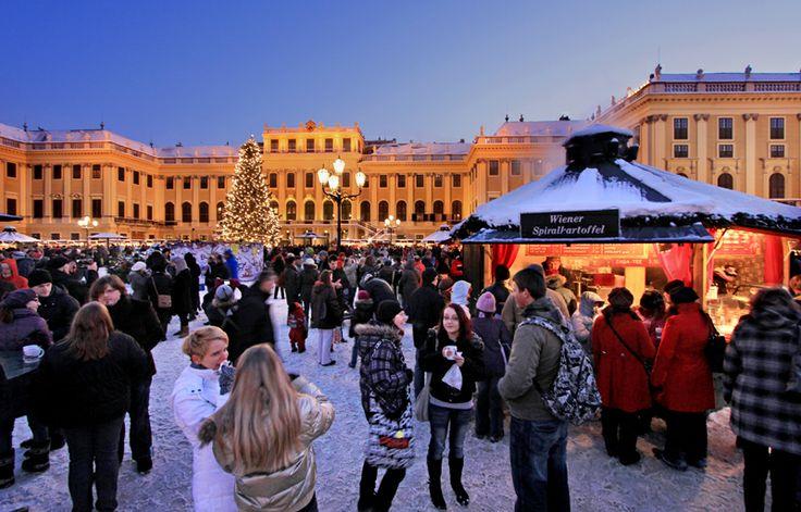 سوق عيد الميلاد في ساحة قصر شونبرون