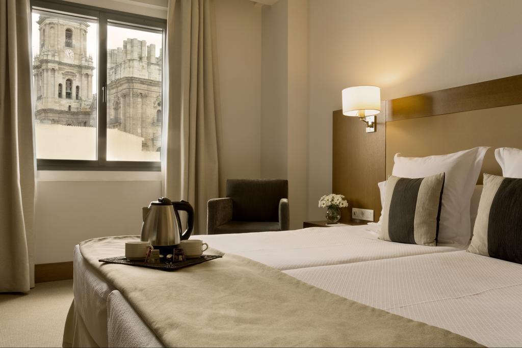 فنادق في ملقا اسبانيا
