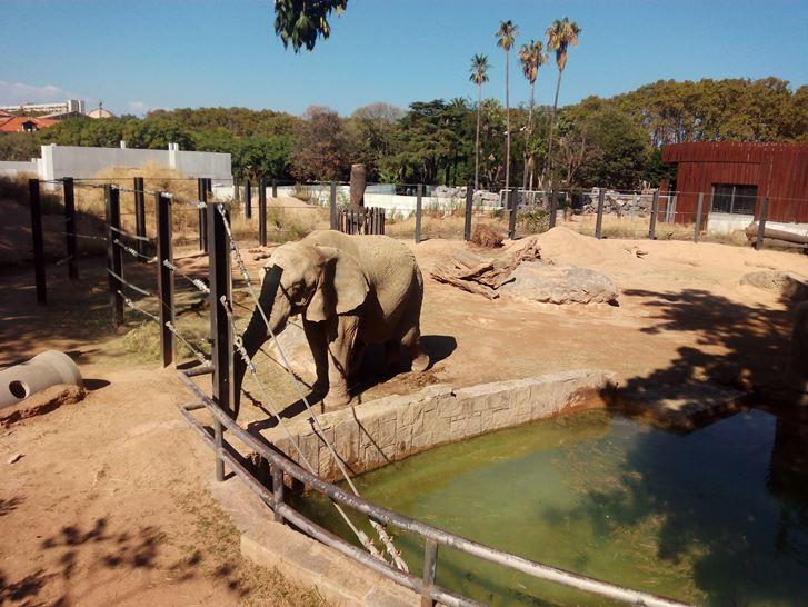 حديقة حيوان برشلونة من اهم اماكن سياحية في برشلونة - صور مدينة برشلونة