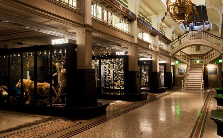 متحف مانشستر من اهم اماكن السياحة في مانشستر انجلترا