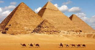 الفنادق في مصر