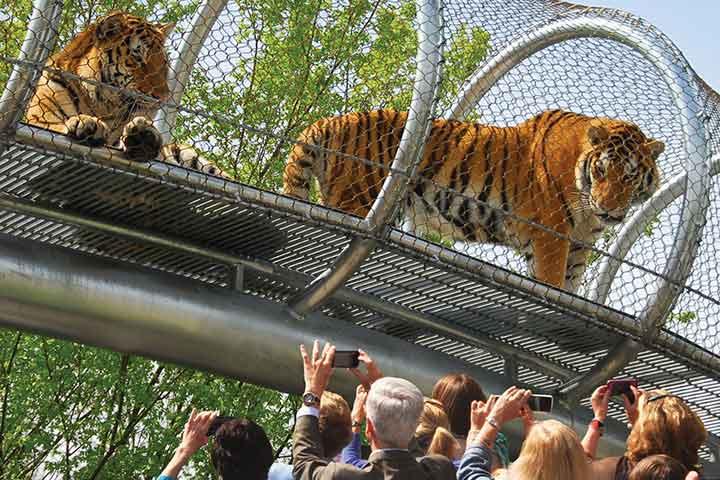 حديقة حيوانات فيلادلفيا