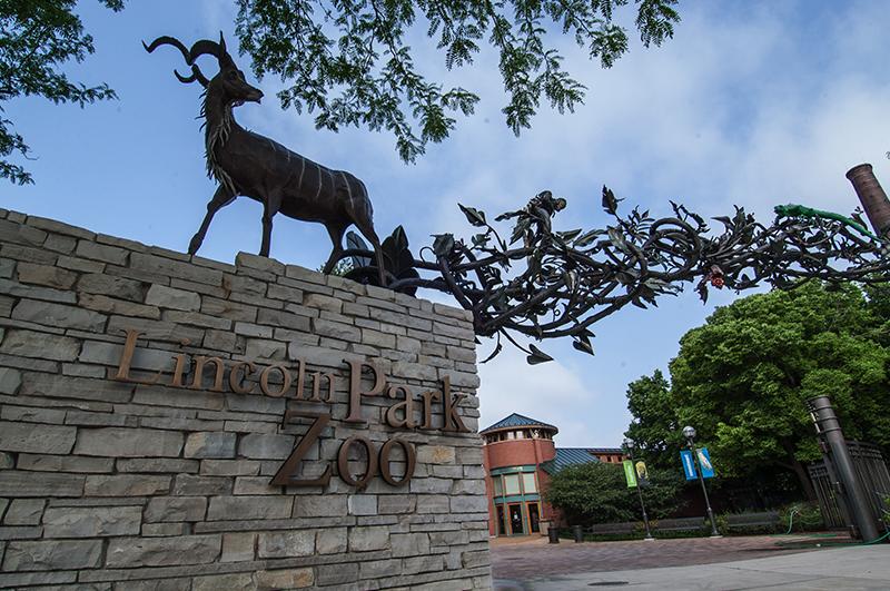 حديقة حيوان لنكولن