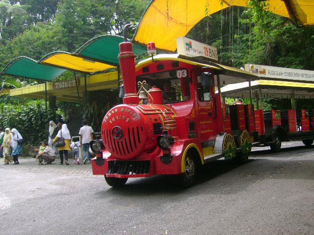 القطار في سفاري بونشاك