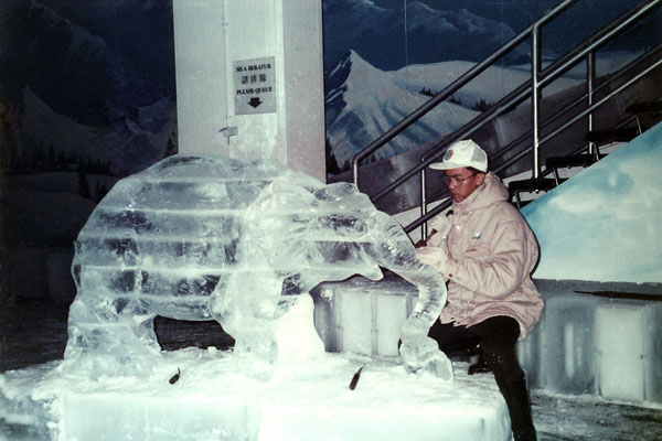 بيت الثلج ماينز وندر لاند