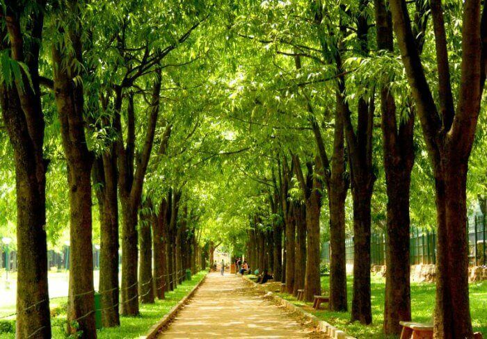 حدائق بنجلور