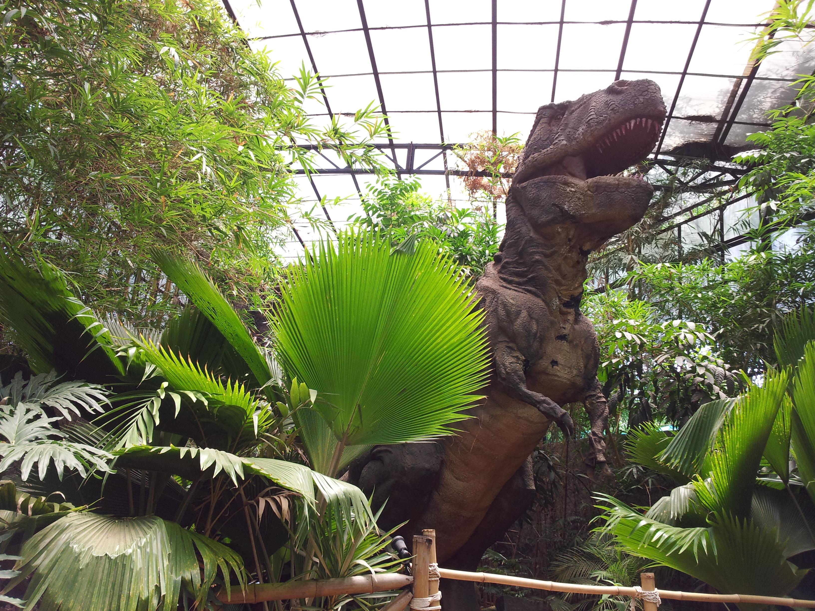 حديقة الديناصورات في سينما سيتي بنجلور