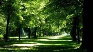 منتزه تيرغارتن في برلين المانيا