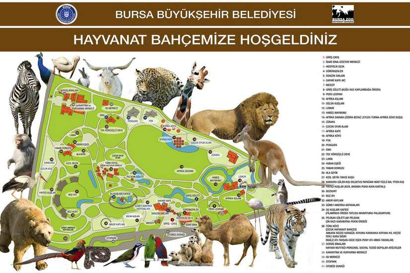 خريطة مصغّرة عن حديقة حيوانات بورصة