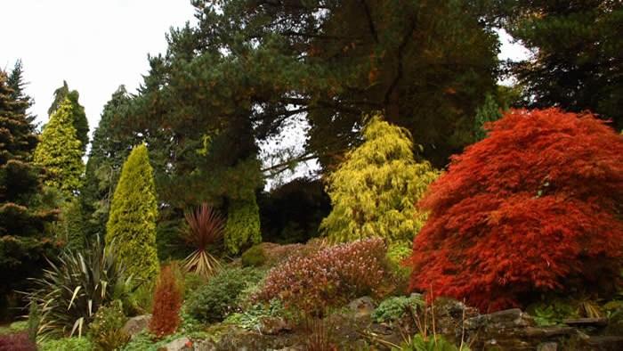 حديقة فلتشر موس في مانشستر