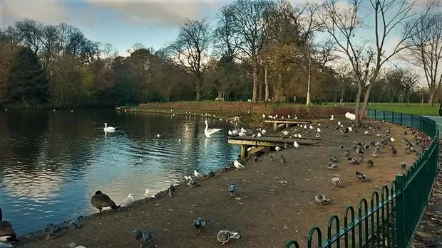 حديقة الكساندرا بارك من اشهر حدائق مانشستر بريطانيا