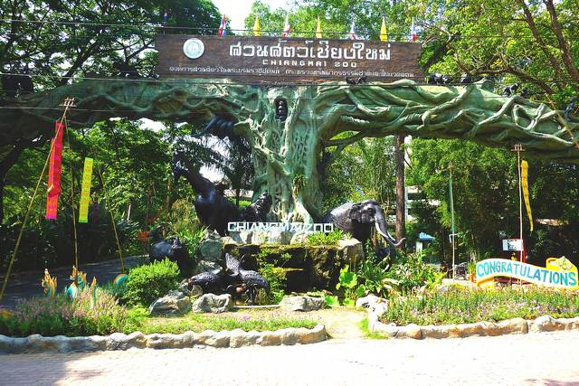 تعتبر حديقة حيوانات شنغماي Chiang Mai Zoo من افضل