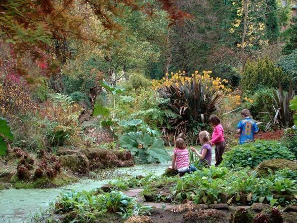 حديقة فليتشر موس النباتية في مدينة مانشستر بريطانيا