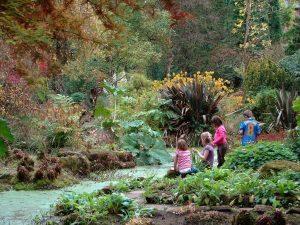 حديقة فليتشر موس النباتية في مانشستر انجلترا