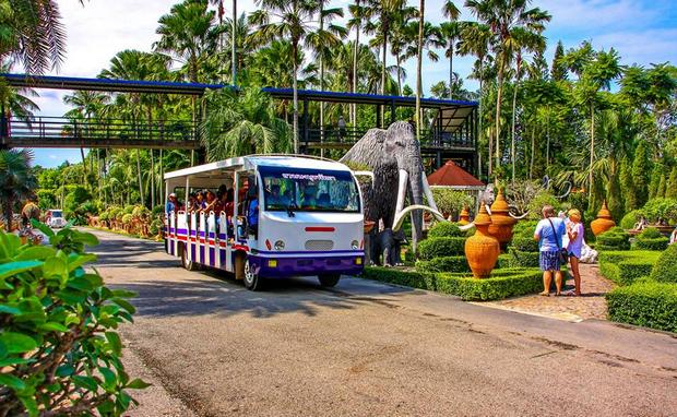 حديقة نونغ نوش الاستوائية في تايلاند بتايا