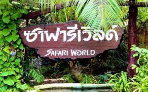 تعرف في المقال على افضل الانشطة السياحية في سفاري بانكوك ، بالإضافة الى افضل فنادق بانكوك القريبة منها