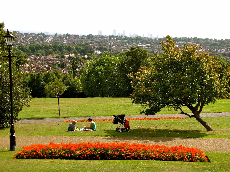 alexandra park london