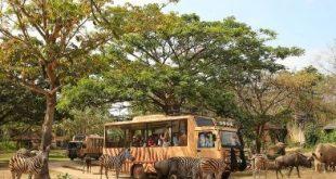 bali safari and marine park indonesia