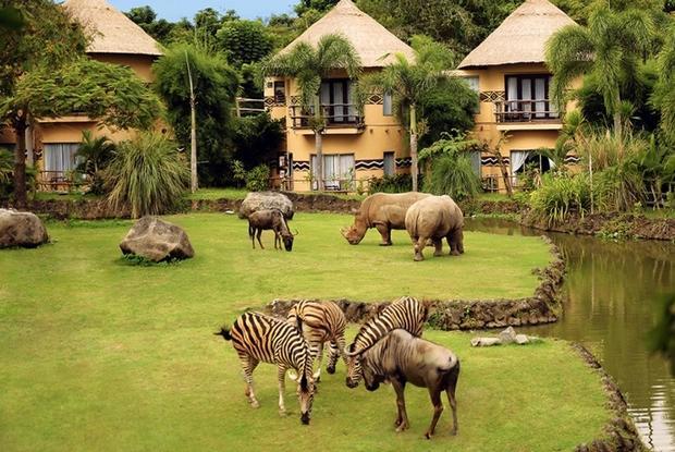 حديقة سفاري بالي اندونيسيا
