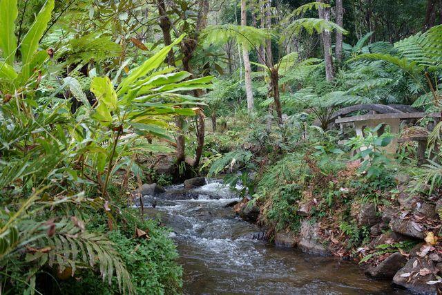 حديقة دوي انتانون الوطنية في شنغماي