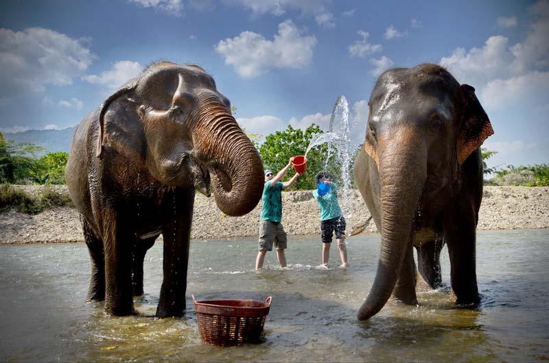 حديقة الفيلة من افضل اماكن السياحة في شنغماي